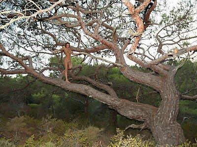 Tanned brunette teen nude in a tree