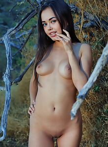 Shaved girl with black hair nude in a field